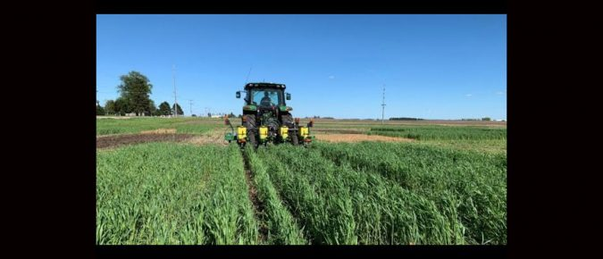 Do cover crops effect residual herbicides